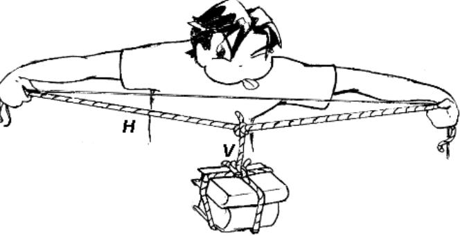 Desafio da Corda - Experimento de Física - Vetores